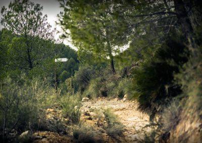 Senda Vedà, SL CV 17.1