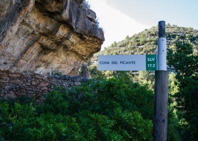 Cova del Picante, SL CV 17.2
